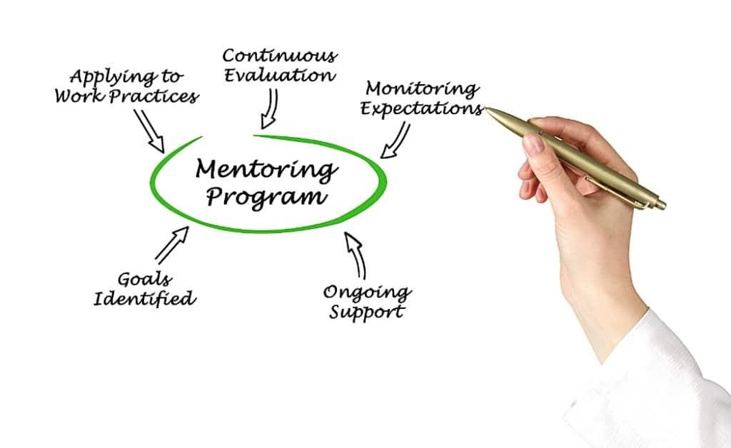 mentorship for businesses